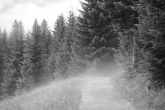 Foggy mountain (black and white version) (claireandre) Tags: mountain austria foggy brouillard tyrol brume autriche