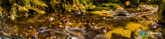 River flowing from cave in Panorama  Upana Caves River Tahasis - Strathacona Provincial Park Vancouver Island (Uffys Picture Memories) Tags: california park travel light vacation arizona white ontario canada fall colors beautiful stone vancouver clouds oregon century turkey river dark painting landscape mexico outdoors island photography gold waterfall moss highway rocks stream warm europe bc pacific northwest artistic ngc courtney nanaimo columbia pebbles victoria falls atlantic adventure caves yukon alberta limestone british cave marble strathcona caving campbell karst 19 grounds parksville 19th qualicum provincial comox tahasis