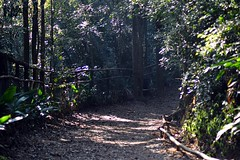 We are the way that we choose. (kuabara) Tags: parque brazil sp alfredo paulo são volpi
