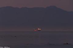 At Anchor (C McCann) Tags: morning orange canada vancouver sunrise de island dawn ship bc juan pacific columbia victoria cargo anchor british shipping strait fuca