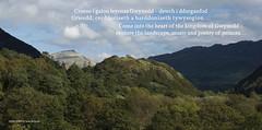 Princes of Gwynedd, rear for bespoke Audio Bench