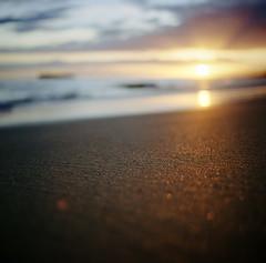 to end the day properly: maui, part four (manyfires) Tags: ocean sunset film beach analog mediumformat square landscape island hawaii coast sand bokeh shoreline maui hasselblad pacificocean shore tropical coastline hasselblad500cm