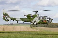 """Having a ball..."" (Tony Osborne - Rotorfocus) Tags: training army air corps area salisbury british gazelle plain westland aerospatiale ah1 2013 spta"