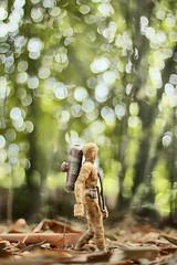 IMG_9044 (ChatchawanB.) Tags: wood garden walking actionfigure action zombie ashley ak bamboo 3a adventure figure 16 zomb mummy ashleywood katel mumb onesix threea