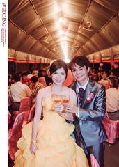 DSC_2180 (Neko11 ()) Tags: wedding portrait  neko                                               neko11
