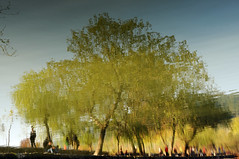 Water trees    (Mel@photo break) Tags: china autumn people house plant color reflection tree art fall water rural painting mirror countryside branch village chinese like mel foliage melinda anhui  colrful  hongcun chanmelmel melindachan