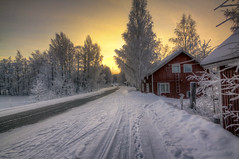 Those Winter Mornings (MilaMai) Tags: road morning trees winter sky snow cold building window yellow sunrise suomi finland landscape countryside europe branch footprints redhouse footsteps mntyharju originalimage tracksinthesnow milamai