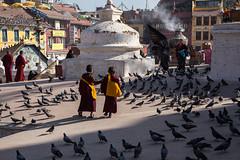 Monk boys (1 of 1) (newliskeard) Tags: nepal sunset mountains reflection sunrise trekking death tibet himalaya hinduism annapurna travelportrait canon24105l sigma7020028 canon6d