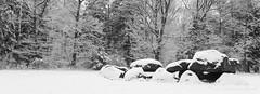 Hunebed / Dolmen (Kees Waterlander) Tags: winter blackandwhite snow zwartwit sneeuw nederland thenetherlands drenthe neolithic dolmen hunebed exloo trechterbekervolk latesteentijd
