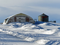 Winter outside the city (annkelliott) Tags: winter snow canada metal barn rural shadows seasons shed silo explore alberta farmyard ruralscene blueshadows interestingness162 allrightsreserved annkelliott anneelliott eofcalgary anneelliott2014 explore2014february07