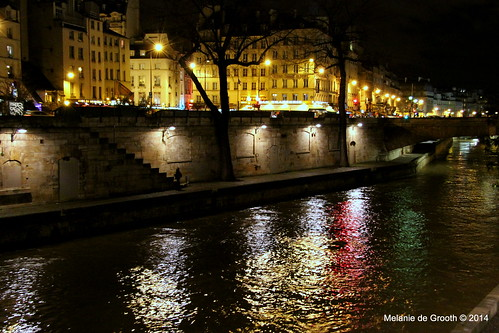 La Seine at Night