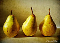 Pears Line-Up (Through Serena's Lens) Tags: life light stilllife fruits yellow still pears textured