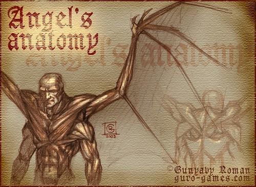 2003_02_18_angelanatomy
