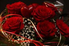 150214 IMG_0151 (PixElise-57) Tags: saint rose fleurs canon rouge coeur amour valentin 70d