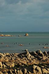 Merlevenez - atana studio (Anthony SÉJOURNÉ) Tags: beach port golf studio marine bretagne musée anthony cote bateau plage morbihan base peche barre ponton rochers etel lorient océan portlouis sousmarin épave atana séjourné merlevenez