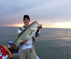 Lobina Bass Reporte Pesca12