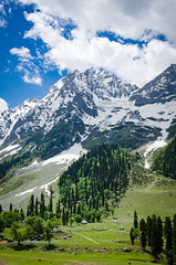 Sonmarg - Kashmir, India (Parth_Joshi) Tags: trees india snow mountains nature clouds nikon hills kashmir sonmarg d7000