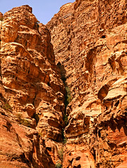 Path to the Monastery 15 (David OMalley) Tags: world city heritage rose rock stone site desert path petra siq carving unesco east jordan monastery arab middle carvings jordanian monumental jebel nabatean nabateans hewn maan almadhbah
