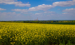 Didcot Power Station (Peter Tappern) Tags: trees sky station clouds power rapeseed