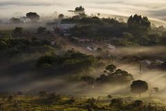Fog and morning light (Fabio Rage) Tags: morning fog sunrise haze minas gerais rage fabio da serra sao amanhecer joao canastra arraial batista