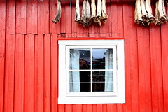 Cods (anna steppenwolf) Tags: red window norway architecture cod