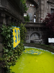Viterbo_15_1240 (Dubliner_900) Tags: flower fountain olympus viterbo lazio tuscia micro43 omdem5markii mzuikodigitaled1240mm128pro