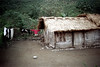 32-053 (ndpa / s. lundeen, archivist) Tags: nick dewolf nickdewolf 32 reel32 color photographbynickdewolf 1970s 1972 fall film 35mm winter republicofchina taiwan taiwanese eastcoast easterntaiwan hualien hualiencounty easterncoast village rural building house home dwelling clothes clothesline thatchroof thatchedroof china chinese 1973