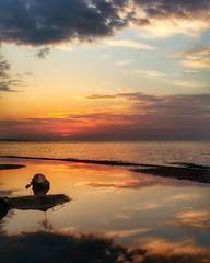 Reflection series (ossington) Tags: travel sun toronto ontario canada love beauty sunrise landscape amazing shoreline reflect shore lakeshore dreamy lakeontario bliss greatness greatlake skylovers