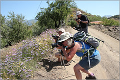 Get The Shot! (Mabacam) Tags: mountain mountains nature walking landscape outdoors countryside spain view hiking country photographers andalucia trail moorish vista wildflowers hikers walkers 2016 sayalonga canillasdealbaida