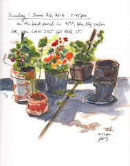 Or you can just go for it. (jimblodget) Tags: backyard flowers pen sketch watercolor pencil ink penandink