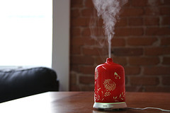 red, oriental themed essential oil diffuser misting (yourbestdigs) Tags: blue red mist black brick green nature fog table bottle natural herbs background smoke system smell rosemary essential oil medicine eucalyptus therapy diffusion aromatic spa diffuser herbal vapor medicinal peppermint fragrance vaporized humidifier diffuse aroma inhale aromatherapy nontraditional freshener nebulizer therapeutic vaporizer inhalation humdifier
