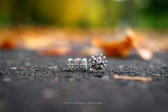 The king and queen (|| Rehnumah Insan ||) Tags: autumn england stilllife color green art composition contrast garden prime dof artistic bokeh object ring depthoffield jewellery 50mm18 canon600d