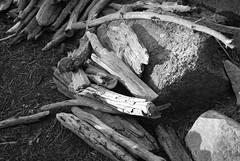 Yosemite (Ellemgee Photography) Tags: wood camping blackandwhite bw sticks stock yosemite woodpile stockphotography ellemgeephotography ellemgee
