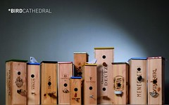 Bird Cathedral (irecyclart) Tags: wood bird birdhouse boxes