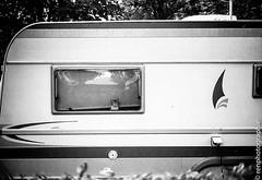 Charavane. (renphotographie) Tags: camping bw monochrome chat bretagne bnw leicam7 caravane kodaktmax renphotographie