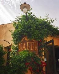 Il bar dell'angolo (iremagi) Tags: caff sicilia insegna bonagia