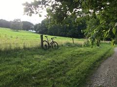 IMG_8341 (Fred10195) Tags: camino sonder sonderbikes