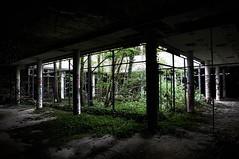 (Farlakes) Tags: abandoned decay gap farlakes