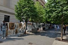 Fifth Avenue Bazaar (Eddie C3) Tags: newyorkcity fifthavenue uppereastside metropolitanmuseumofart sidewalkstories