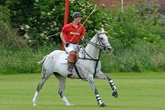 a MH1_2537 (bajandiver) Tags: rutland polo equestrian horses bajandiver