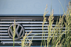 Bulli (-Photloos-) Tags: urban vw canon volkswagen 50mm stuttgart details gras 0711 6d urbandetail detailshots withcanonyoucan