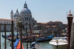 Venice (jeannetbijlsma) Tags: italien blue venice sea italy love water romantic gondola gondolier adriatic gondolas gondel