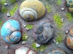 It`s called... Spiraland (S N A I L I C I O U S) Tags: inspiration spin snails soe autofocus snailshells flickrfriday snailicious 100commentgroup  infinitexposure snailiciousnet insight  spiraland