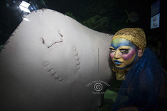 A Night At The AQUEERium, Pride 2016, Toronto, Canada (DawnOne) Tags: gay costumes party copyright fish toronto canada men water animals glitter bar night lesbian fun dawn aquarium women jellyfish dj ray stingray australian ripleys makeup kitty pride bodypaint event linda lgbt mermaids virago sharks judy trans lesbians facepaint superstar hammond stilts transsexual sapphire reign gays 2016 mermen cownose lgbtq titha indyfoto aqueerium