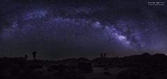(yuyustudio) Tags: longexposure nightphotography summer night nationalpark outdoor joshuatree galaxy milkyway ef1635mm canon5diii