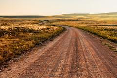 Desert Road (Scosanf) Tags: morning summer sunlight green nature grass canon eos desert ef2470mmf28lusm goldenhour topaz 6d restyle kiowanationalgrasslands