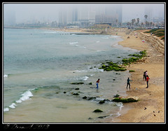 View of Tel-Aviv from Jaffa on a misty afternoon. (Dora-A) Tags: trees light sky flower color green nature beautiful landscape photography israel daylight telaviv spring colorful mediterranean day view bright country north picture middleeast galilee scene jaffa panasonic foliage holyland hdr mideast blooming flourishing  doraa dmcfz150 northernkingdomofisrael