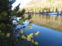 (Obakeneko) Tags: camp snow mountains reflection tree water video vimeo stream manual gps ru desc altairepublic canonpowershots90 garmindakota20 ustkoksinskydistrict stay