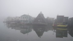 Misty Morning on the hhouseboat (harrietmoss) Tags: art sausalito houseboats sfbay ernestosanchez