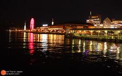 神户港夜景